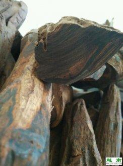 越南黄花梨-有纹理有香味