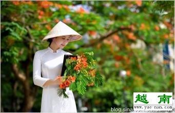 《爱上一座城之-越南特产网的故事》二十