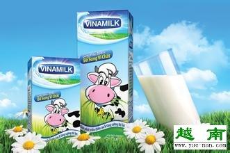 越南酸奶vinamilk竟然是越南酸奶界的网红