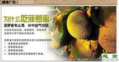 越南特产菠萝蜜图片让你一饱眼福