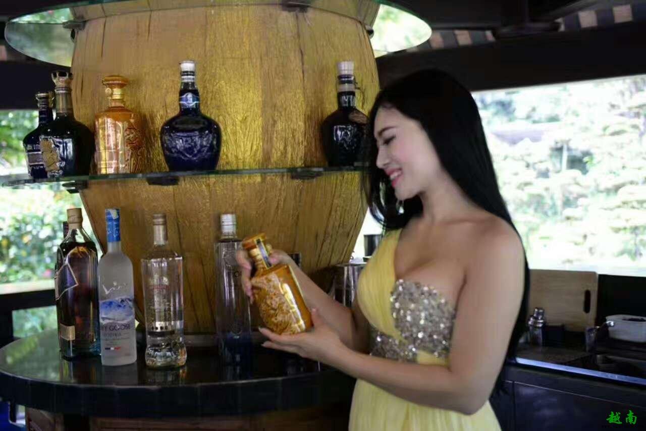 源自皇家宫廷秘传古方的越南庞泰酒